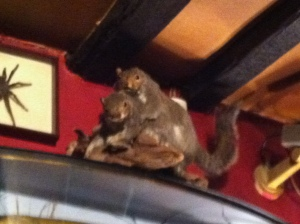 Yes, that is two stuffed squirrels shagging :)