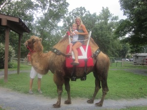 A camel ride at the zoo