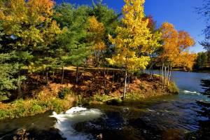 Lovely Fall!