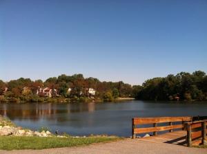 Lake Elkhorn under blue skies