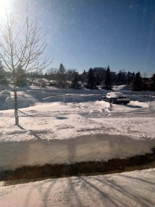 Snowy Minnesota