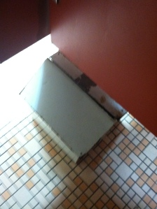 This is a sanitary bin. Yes, I really sat on the loo and took this picture :)