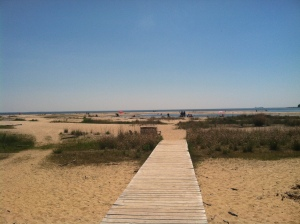 South Maryland beaches