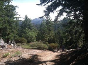 Love this place, Idyllwild