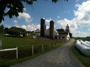 The farm land