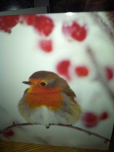 Little Robin Redbreast :)