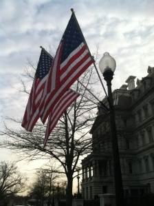 USA flags flying high