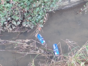 Some cans in a river. Bloody toerags!